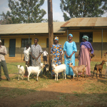 GOAT-REARING-IN-EASTERN-UGANDA-150x150