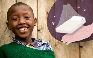 Zanzariere anti-malaria con insetticida